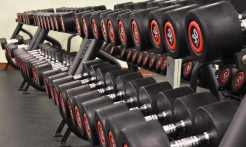 Jak wybrać siłownię – duża sieciówka czy mała osiedlówka?